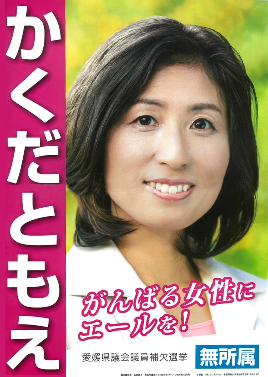 2017年愛媛県議会議員補欠選挙